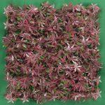 follaje-sintetico-modelo-mapple-rojo-marsam-decoracion-puebla